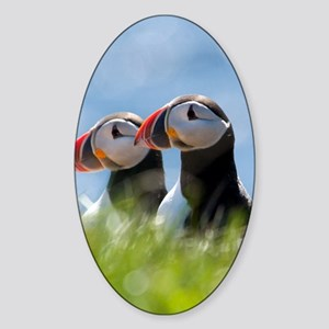 Puffin Pair 7.355x9.45 Sticker (Oval)