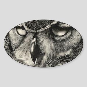 Owl Sticker (Oval)