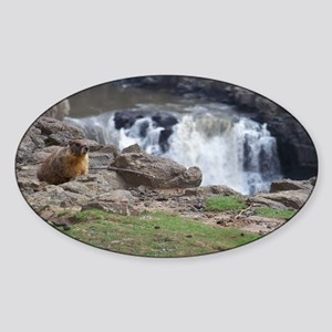 marmot and palouse falls Sticker (Oval)