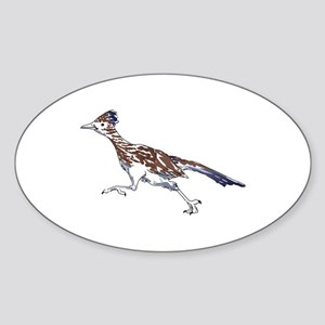ROADRUNNER BIRD Sticker