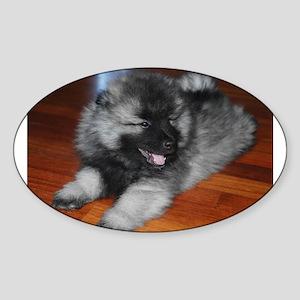 keeshond puppy Sticker