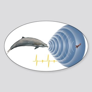 Whale sonar, artwork Sticker (Oval)