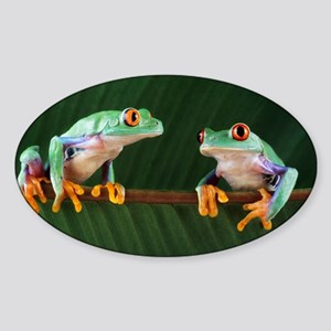 Red-eyed tree frogs Sticker (Oval)