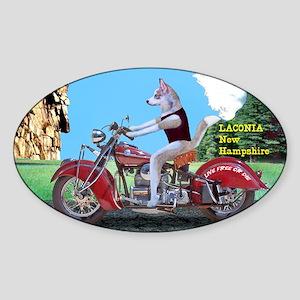 Siberian Husky Riding Indian Motorc Sticker (Oval)