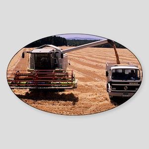 Wheat harvest - Sticker (Oval)