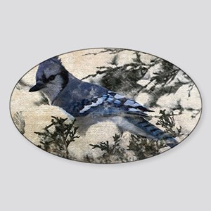 winter snow blue Jay nature country Sticker (Oval)