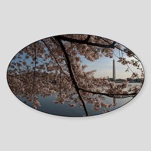 DSC_0029-4 Sticker (Oval)