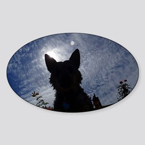 Stealthy Cattle Dog Sticker (Oval)