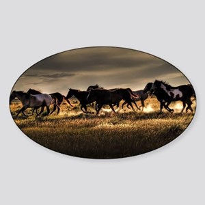 Wild Horses Running Free Sticker