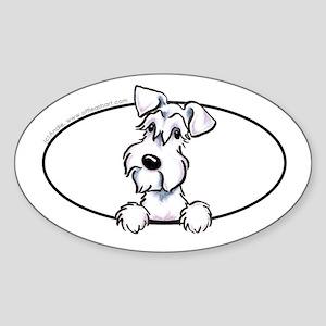 White Schnauzer Peeking Bumper Sticker (Oval)