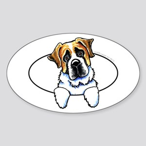 Saint Bernard Peeking Bumper Sticker (Oval)