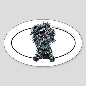 Affenpinscher Peeking Sticker
