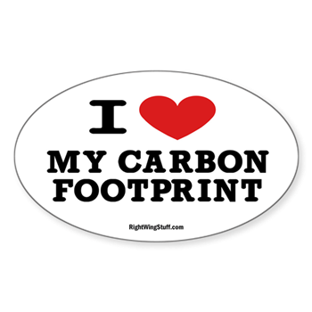 I love my carbon footprint oval decal i love my carbon footprint i love my carbon footprint oval decal maxwellsz