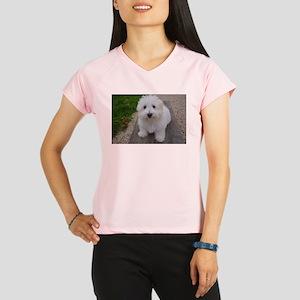 coton de tulear on bench Performance Dry T-Shirt