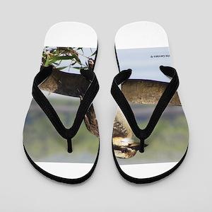 51f185900a1 Kookaburra Flip Flops - CafePress