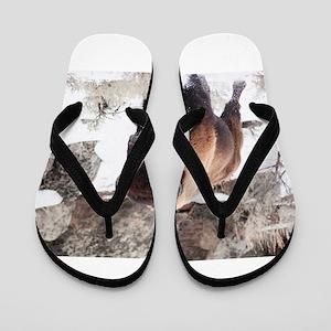hot sale online 21602 08811 Buffalo Flip Flops - CafePress
