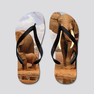 Family Of Elephants Flip Flops