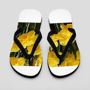 Daffodil flowers in bloom in garden Flip Flops