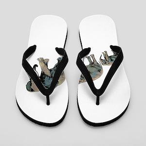 GUIDANCE Flip Flops