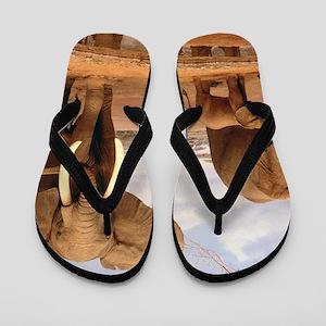 Family Of Elephants Flip Flops