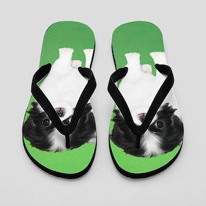 Japanese Chin Flip Flops