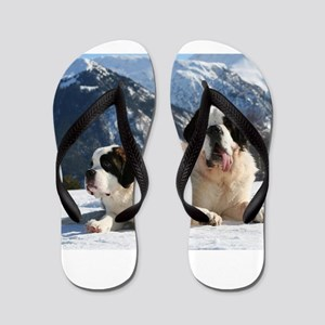 saint bernard group Flip Flops
