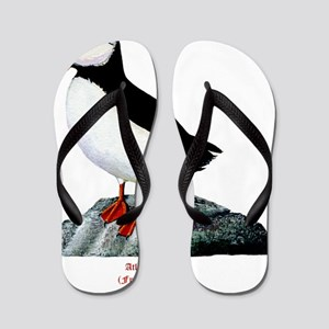 Atlantic Puffin Flip Flops
