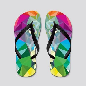 Rainbow Lion Flip Flops