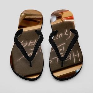 E000069 Flip Flops