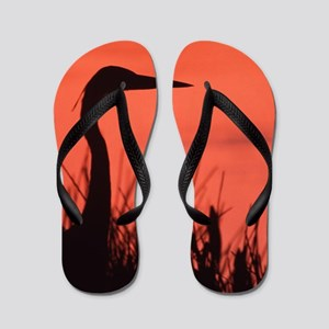heron Flip Flops