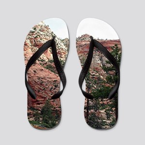 Zion National Park, Utah, USA 14 Flip Flops