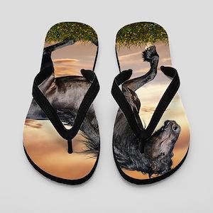 Beautiful Black Horse Flip Flops