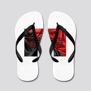 Power corrupts? ABSOLUTELY! Flip Flops