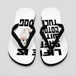 Life Is Safe With A Coton De Tulear Flip Flops
