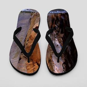 Zion Ntional Park Flip Flops