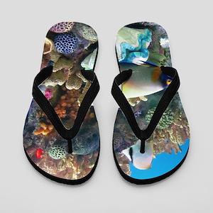 Aquarium Flip Flops