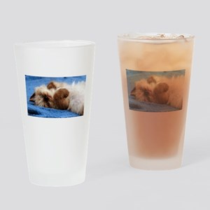 SweetBogie Drinking Glass