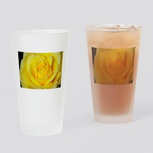 Beautiful single yellow rose Drinking Glass