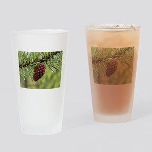Pine Cone Drinking Glass