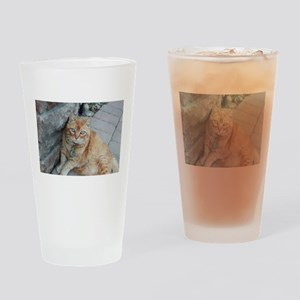 Simba orange tabby cat Drinking Glass