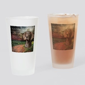"""Why God Made Dogs"" GSP Drinking Glass"