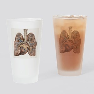 Heart and lungs, historical illustr Drinking Glass