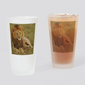 male lion kenya collection Drinking Glass