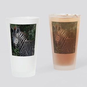 young zebra note Drinking Glass