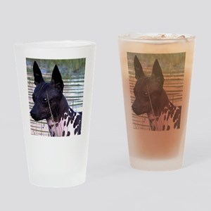american hairless terrier Drinking Glass