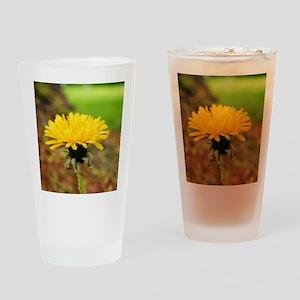 218230_225657577448627_160839957263 Drinking Glass