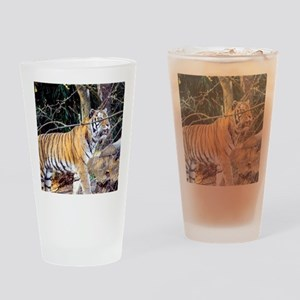 Tiger in the woods Drinking Glass