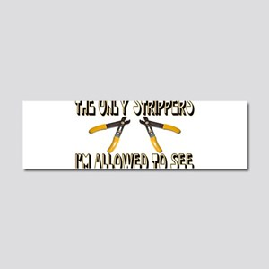 Only Strippers Car Magnet 10 x 3