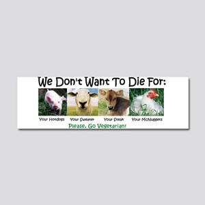 Animal Voices Car Magnet 10 X 3