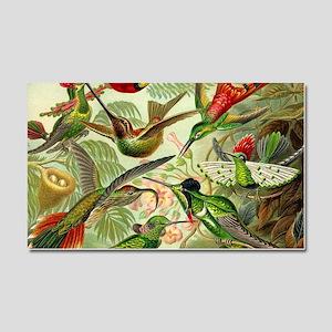 Vintage Hummingbirds Decorative Car Magnet 20 x 12